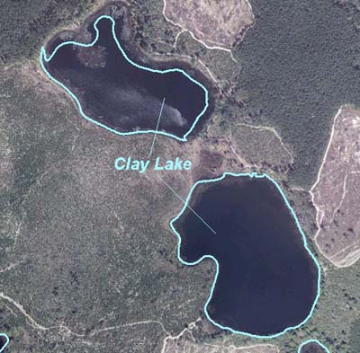 Clay Lake (in Ocala National Forest)
